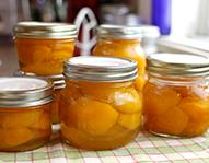 Fruits & Flavoring Pastes / Liquids